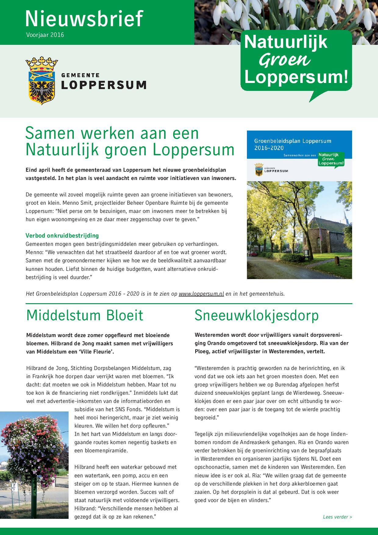 Nieuwsbrief Groen Loppersum voorjaar 2016-page-001